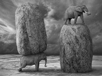 elefanti copia