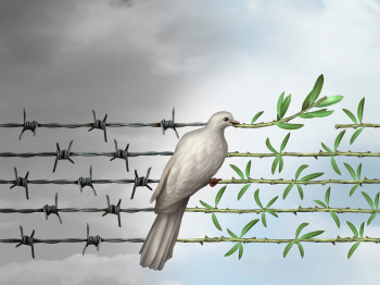Hope concept as a dove perched on barbed wire transforming into an olive branch as a symbol for good will towards man and a respect for humanity and the globe as a new year or holiday greeting with a wish and dream of a safer world.